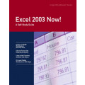 Excel 2003 Now!